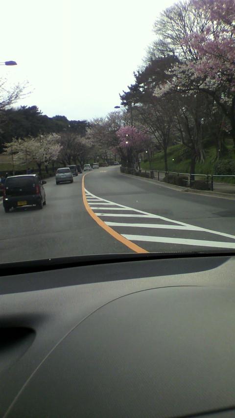 祝・渋谷まで開通
